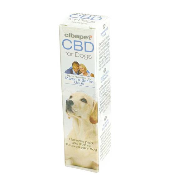 CBD Oil for Dogs 4