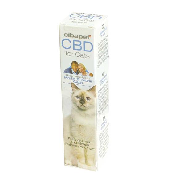 CBD Oil for Cats 4