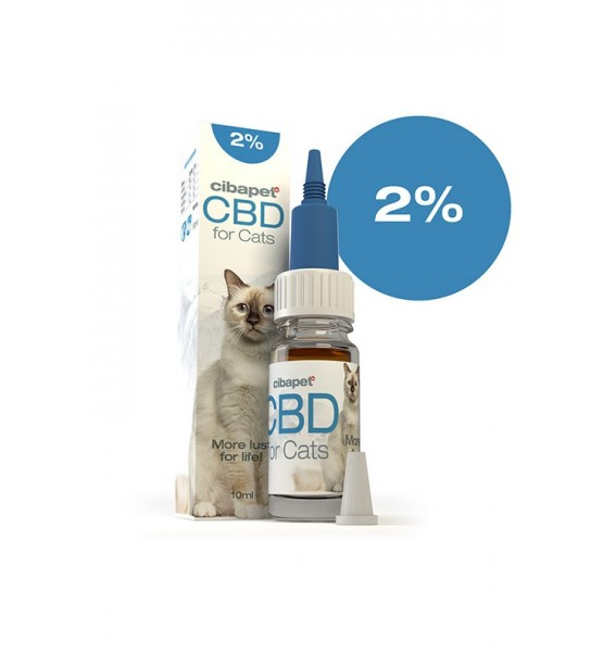 CBD oil for cats 2%