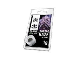 Jelly CBD PURPPLE HAZE 22% 1G