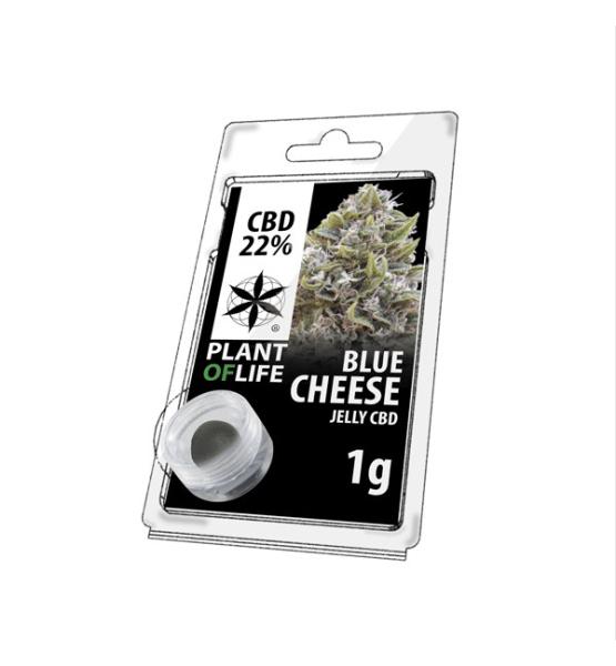 Jelly CBD BLUE CHEESE 22% 1G