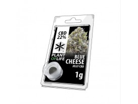 Gelee CBD BLUE CHEESE 22% 1G