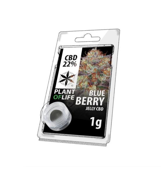 Jelly CBD BLUEBERRY 22% 1G