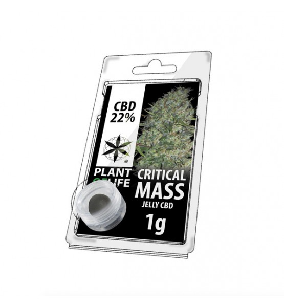Jelly CBD CRITICAL MASS 22% 1G Plant of Life