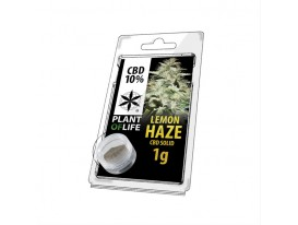 CBD-Harz LEMON HAZE 10% 1G