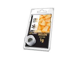 Jelly CBD MELON 22% 1G