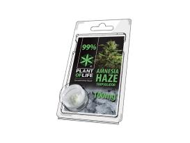 Terpsolator Amnesia Haze 99% CBD - 100mg
