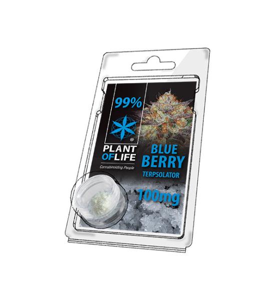 Terpsolator Blueberry 99% CBD - 100mg