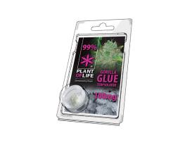 Terpsolator Gorilla Glue 99% CBD - 100mg