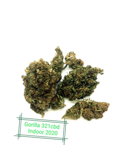 CBD Flower Indoor Gorilla Glue 11% (in French)