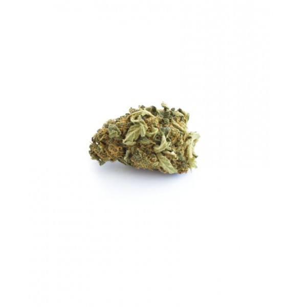CBD Herb 707 Truthban 12,1% (in French)