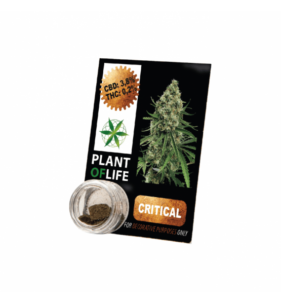 CBD Resin CRITICAL MASS 3,8% 1G Plant of Life