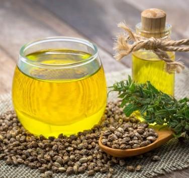 Comment conserver l'huile de CBD