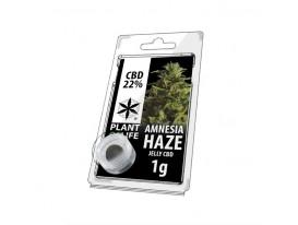 Jelly CBD AMNESIA HAZE 22% 1G Plant of Life