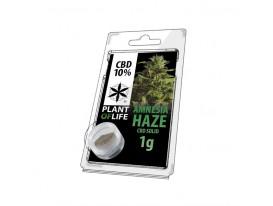 Żywica CBD AMNESIA HAZE 10% 1G Plant of Life