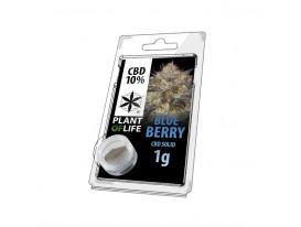 Żywica CBD BLUEBERRY 10% 1G Plant of Life